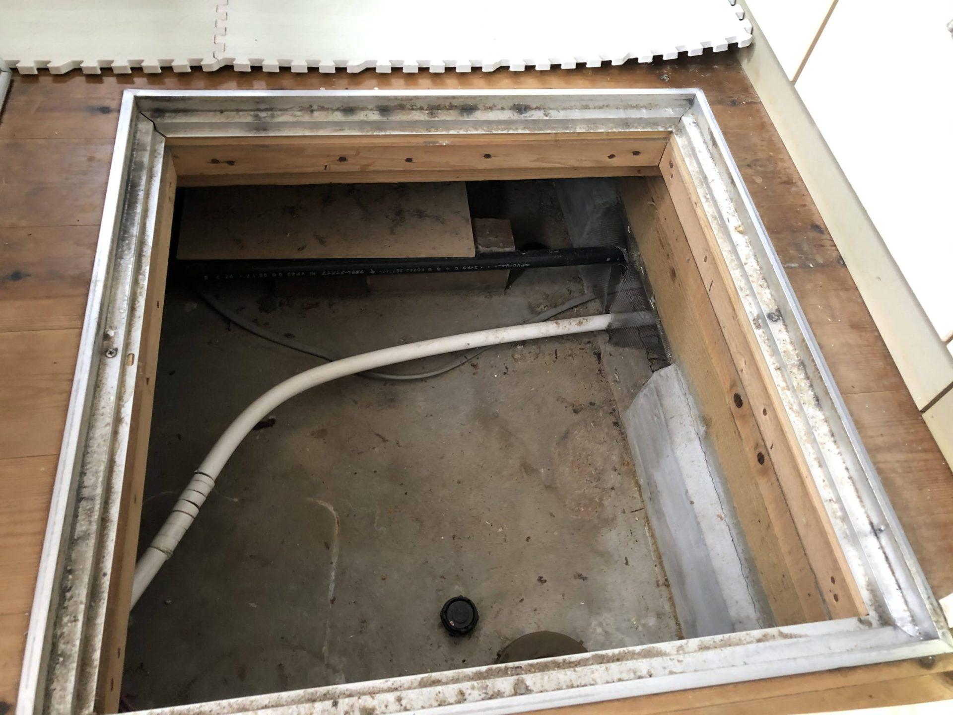 浴室,ヤマトシロアリ,ホウ酸,神奈川県横浜市,No.015